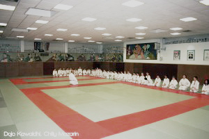 Dojo Kawaishi Chilly_1